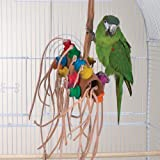 BONKERS – Brainy Bird Wild Series Toys