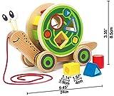 Hape-Walk-A-Long-Snail-Wooden-Pull-Toy