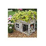 Fairy Garden Wood House Planter