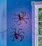 HearthSong LED Spider Web