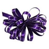 Offray Double Face Satin Ribbon with Silver Edge, 3/8