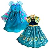 Disney Frozen Frozen Fever 2 in 1 Costume Set [Size 5/6]