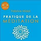 Pratique de la méditation | Livre audio Auteur(s) : Fabrice Midal Narrateur(s) : Fabrice Midal