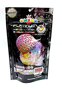 Buy Okiko Platinum Head Huncher & Colour Faster Flowerhorn ...