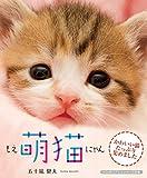萌猫(もえにゃん) (リンダパブリッシャーズの本)