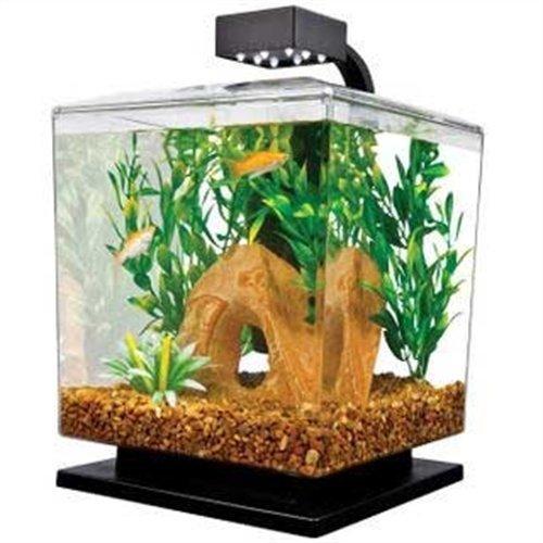 Tetra 29137 Water Wonder Aquarium Kit, Black, 1.5 Gallons (Betta Fish Cube compare prices)