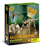 Geoworld Dino Excavation Kit - Brachiosaurus Skeleton