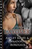 img - for Layover book / textbook / text book