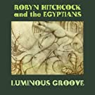 Lunimous Groove [Vinyl LP]