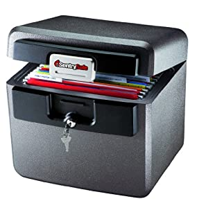 Sentry Safe HD4100SG Fire-Safe 0.65 Cubic Feet Waterproof File, Silver Gray