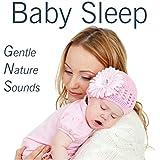 Baby Relaxation Sleep Nature Water Rain Sounds CD