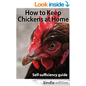 How to Keep Chickens at Home