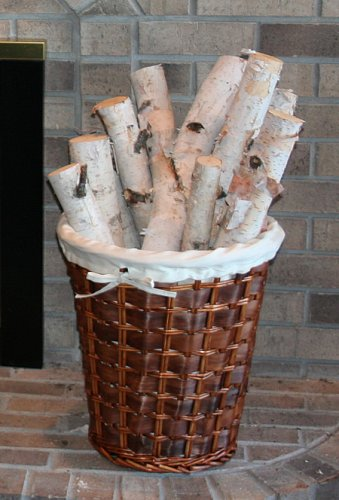 Best Deals! Birch Bundle of Logs