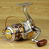 Fashion outlet 10BB Ball Bearing Saltwater/ Freshwater Fishing Spinning Reel 5.5:1