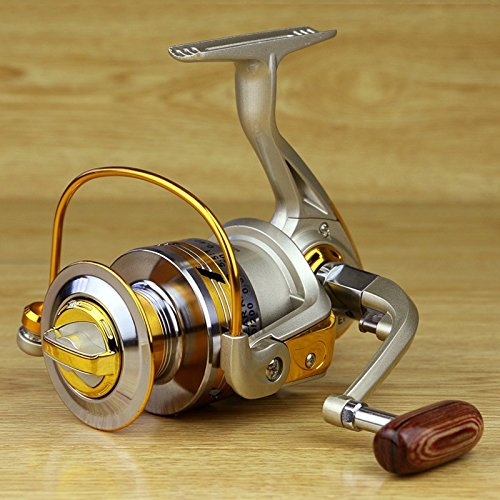 Fashion outlet 10bb ball bearing 5 5 1 saltwater for Freshwater fishing reels