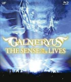 THE SENSE OF OUR LIVES [Blu-ray](�߸ˤ��ꡣ)