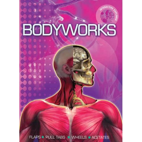 Interactive Explorer: Bodyworks
