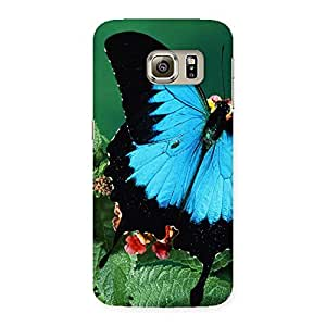 Enticing Butterfly on Plant Back Case Cover for Samsung Galaxy S6 Edge