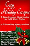 Cozy Holiday Escapes: Warm Seasonal S...