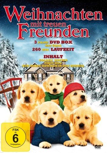 Weihnachten mit treuen Freunden - 3 Filme DVD-Box (Golden Winter - First Dog - Nur Hunde kommen in den Himmel)