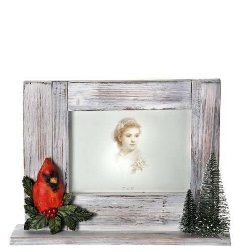 Cardinal Picture Frame