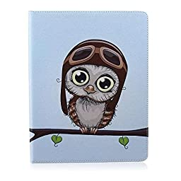 WONE Cartoon Cute PU Leather Flip Case with Cards Slots for Apple iPad 2/3/4 (Big Eyes Owl)