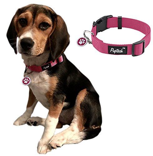 Large Dog Collar Nylon Adjustable with ID Tags for Medium Big Pets 14.5