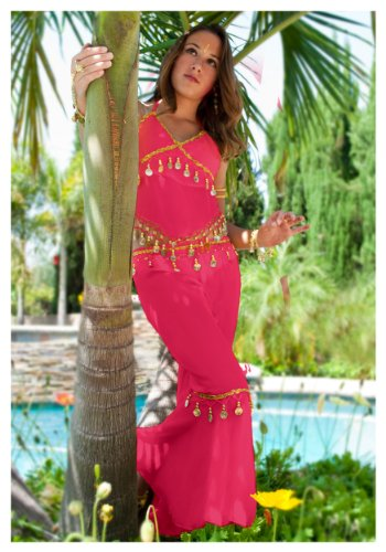 Fuchsia Teen Belly Dancer Costume (Standard) (Belly Dance Costumes For Teenagers)