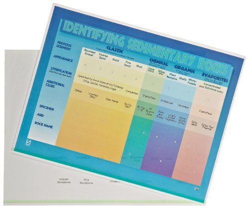 "American Educational Sedimentary Rock Chart Transparency Set, 11"" Length x 8-1/2"" Width"