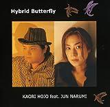 Hybrid Butterfly