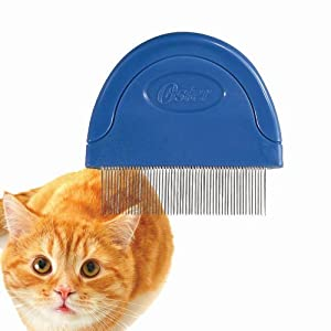 Effective Flea Control Methods for Cats - thesprucepets.com