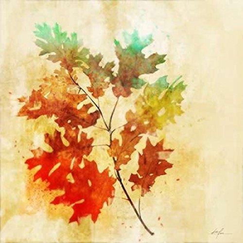Vibrant Autumn 2 Poster Print by Ken Roko (12 x 12)