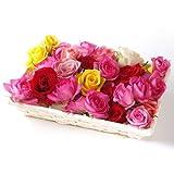ベルローゼス バラ風呂ギフト(55輪以上)【お風呂に浮かべる生花のバラの花首の詰め合わせ・誕生日・御祝・記念日・ご自宅用・産直ローズのギフトセット】