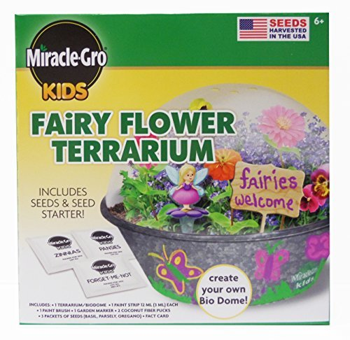 miracle-gro-kids-fairy-flower-terrarium-kit-by-miracle-gro-kids