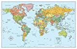 img - for Rand McNally Signature World Wall Map - Laminated book / textbook / text book