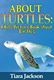 Childrens Book About Turtles: A Kids Picture Book About Turtles With Photos and Fun Facts