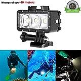 Waterproof LED Diving Light, ProCIV High Power Dimmable LED Light Underwater Light 1200mAh Built-in Rechargeable Battery 40m Underwater Video Fill Light Night Light for GoPro Hero 4 Session 4 3+ 3 2 1