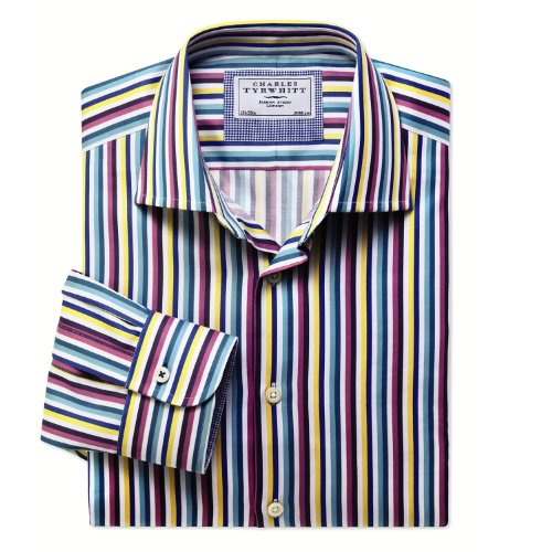 Charles Tyrwhitt Multi stripe business casual classic fit shirt (16.5 - 33)