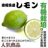 ノンワックス 有機栽培 国産 レモン 5kg