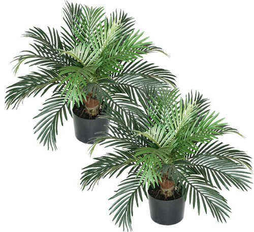 TWO Pre-potted 2' Phoenix Palm Artificial Silk Plants