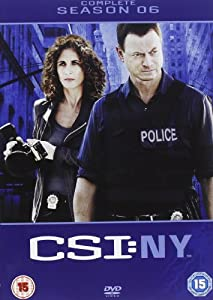 CSI: New York - Complete Season 6 [DVD]