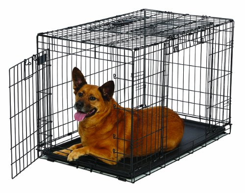 MidWest Homes for Pets Ovation Double Door Dog Crate, 36-Inch (Midwest Double Door Crate compare prices)