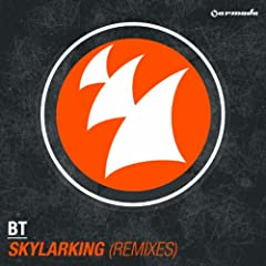 Skylarking (Ilan Bluestone Remix)