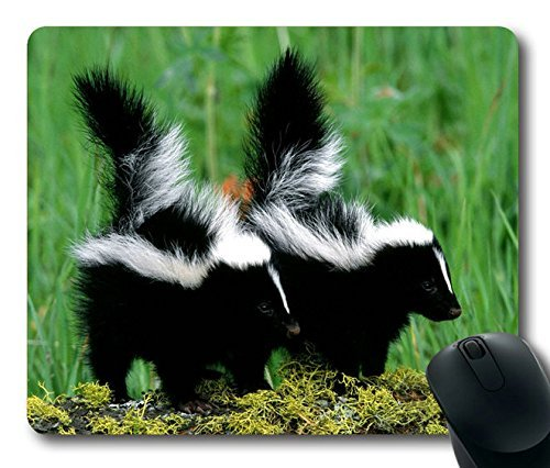Skunk Couple Mousepad