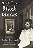 img - for 12 Million Black Voices by Noel Ignatiev (Foreword), Richard Wright (25-Nov-2002) Paperback book / textbook / text book
