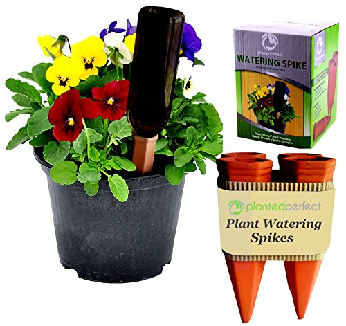 planted-perfect-vacation-watering-4-plant-water-spikes-for-plants-and-flowers-recycled-wine-bottle-w