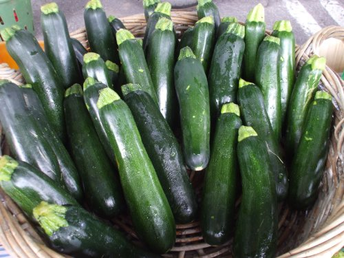 "2G (Approx. 20) Zucchini Seeds ""Black Beauty"" Removes Harmful Substances From The Body, Heirloom"