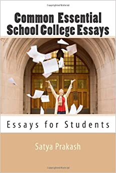 Sample Essays For College Entrance Exams
