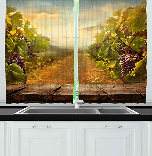 Ambesonne Kitchen Decor Collection, Vineyard Grapes Natural Rustic Vinatage Scenery Orchads Wine Home Kitchenware Cafe, Window Treatments for Kitchen Curtains 2 Panels, 55X39 Inches, Green Brown Blue (Wine Themed Curtains compare prices)