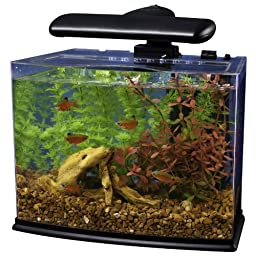 Tetra 29002 Crescent Aquarium Kit, 3-Gallon